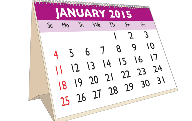 January month in a year 2015 calendar in english. Week starts on Sunday
